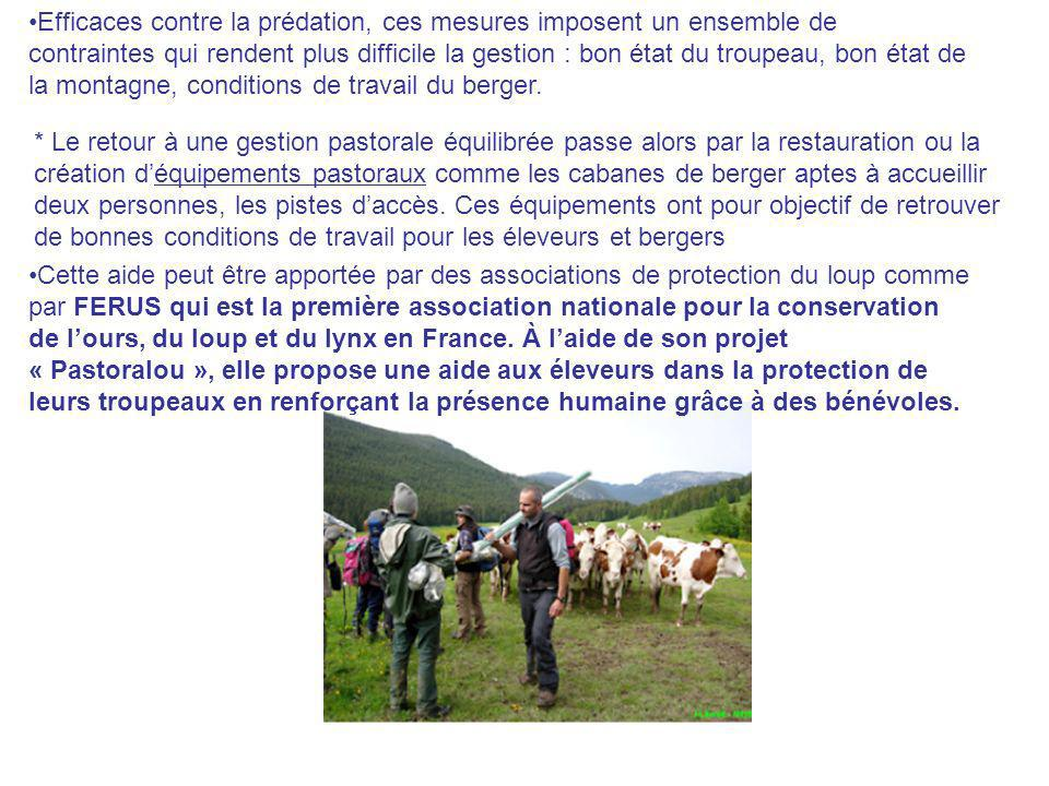 Efficaces contre la prédation, ces mesures imposent un ensemble de contraintes qui rendent plus difficile la gestion : bon état du troupeau, bon état de la montagne, conditions de travail du berger.