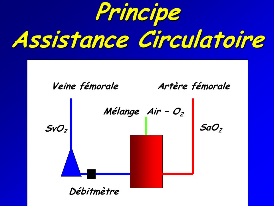 Principe Assistance Circulatoire