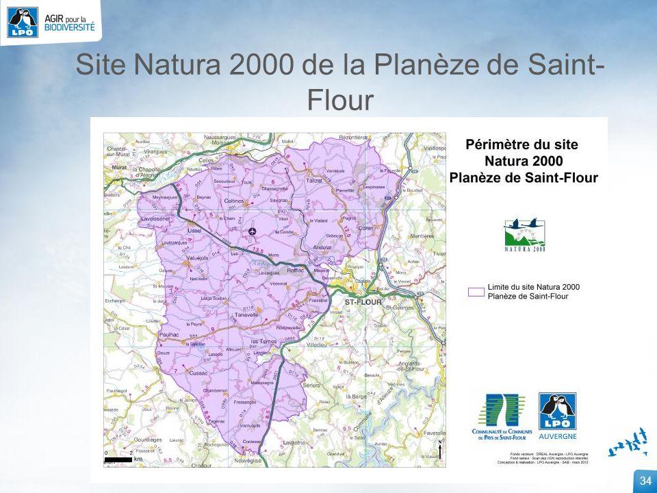 Site Natura 2000 de la Planèze de Saint-Flour