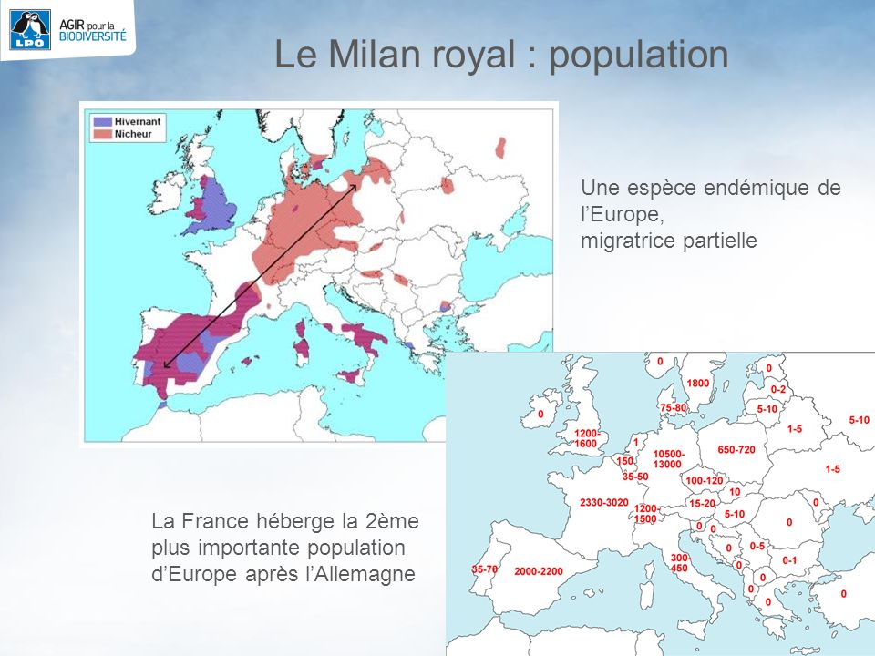 Le Milan royal : population