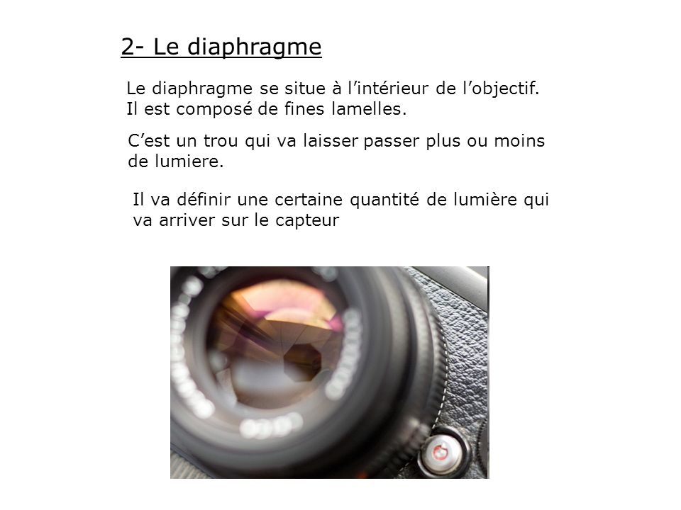 2- Le diaphragme Le diaphragme se situe à l'intérieur de l'objectif. Il est composé de fines lamelles.
