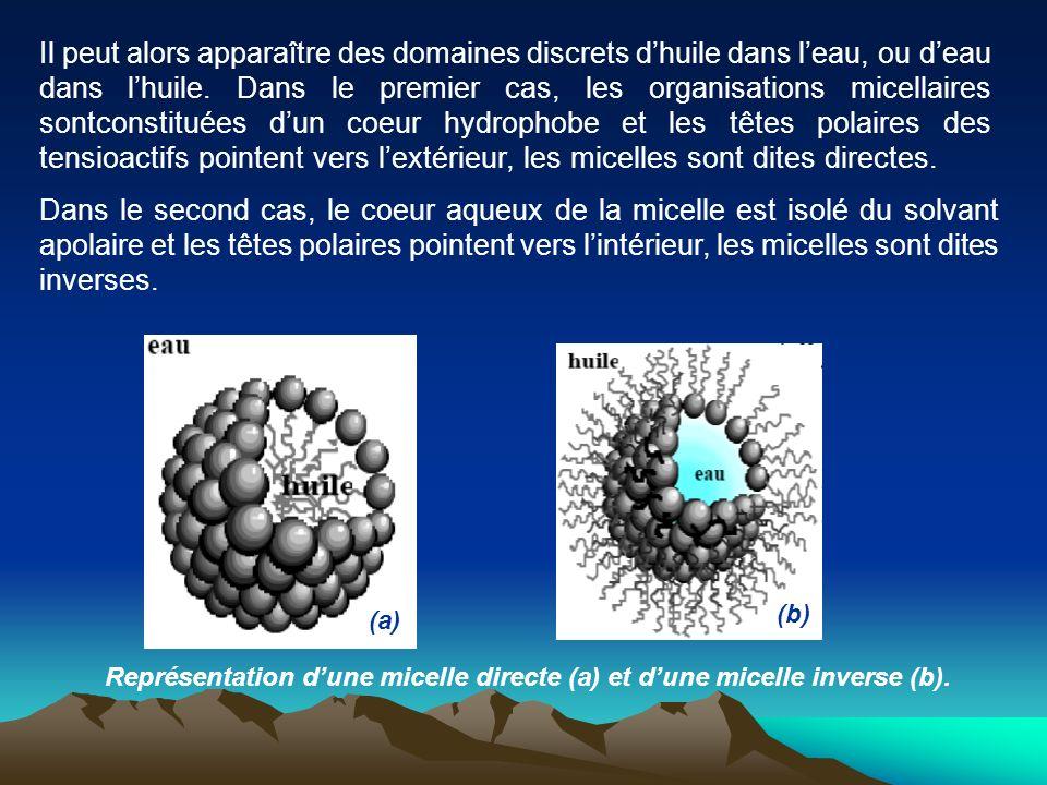 Il peut alors apparaître des domaines discrets d'huile dans l'eau, ou d'eau dans l'huile. Dans le premier cas, les organisations micellaires sontconstituées d'un coeur hydrophobe et les têtes polaires des tensioactifs pointent vers l'extérieur, les micelles sont dites directes.