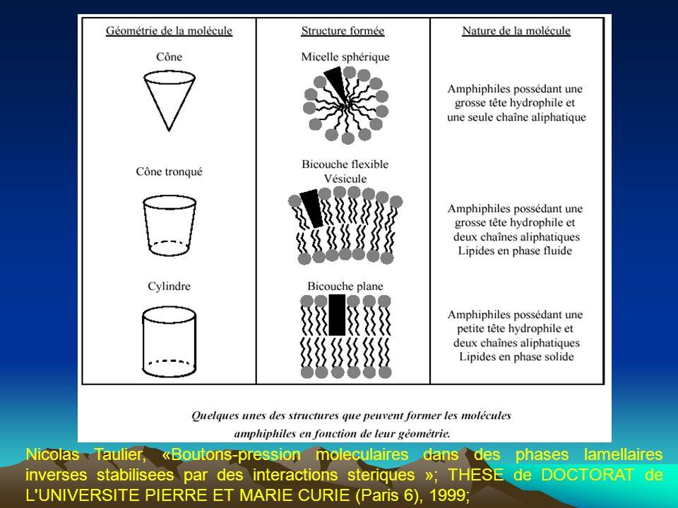 Nicolas Taulier, «Boutons-pression moleculaires dans des phases lamellaires inverses stabilisees par des interactions steriques »; THESE de DOCTORAT de L UNIVERSITE PIERRE ET MARIE CURIE (Paris 6), 1999;