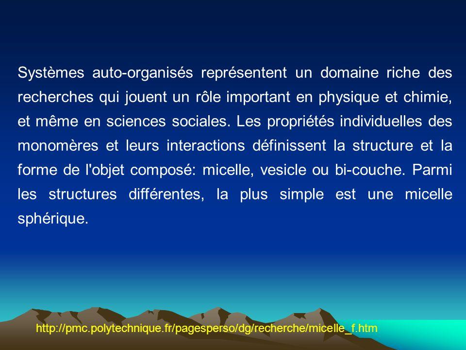 Systèmes auto-organisés représentent un domaine riche des recherches qui jouent un rôle important en physique et chimie, et même en sciences sociales. Les propriétés individuelles des monomères et leurs interactions définissent la structure et la forme de l objet composé: micelle, vesicle ou bi-couche. Parmi les structures différentes, la plus simple est une micelle sphérique.