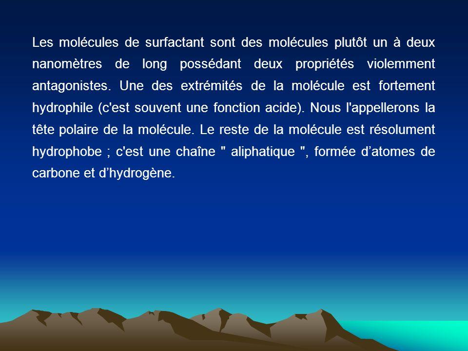 Les molécules de surfactant sont des molécules plutôt un à deux nanomètres de long possédant deux propriétés violemment antagonistes.