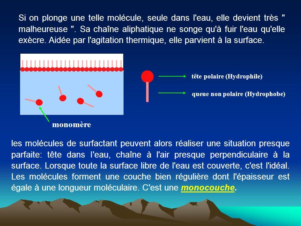 Si on plonge une telle molécule, seule dans l eau, elle devient très malheureuse . Sa chaîne aliphatique ne songe qu à fuir l eau qu elle exècre. Aidée par l agitation thermique, elle parvient à la surface.