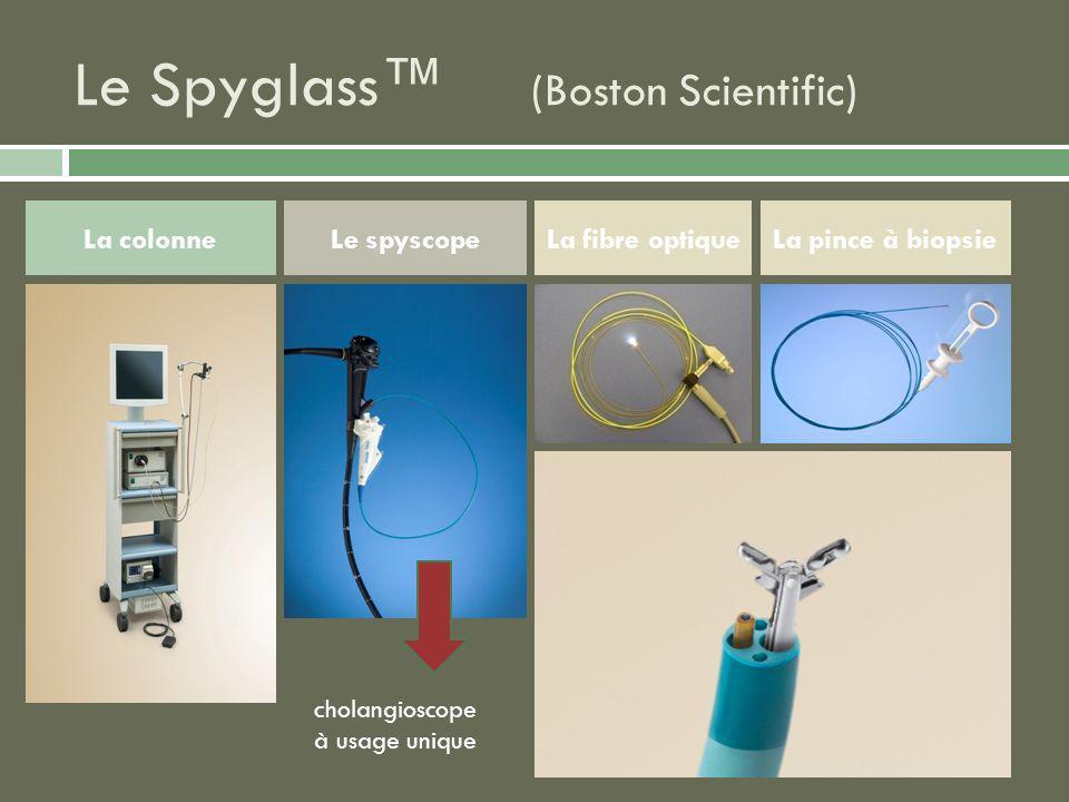 Le Spyglass™ (Boston Scientific)