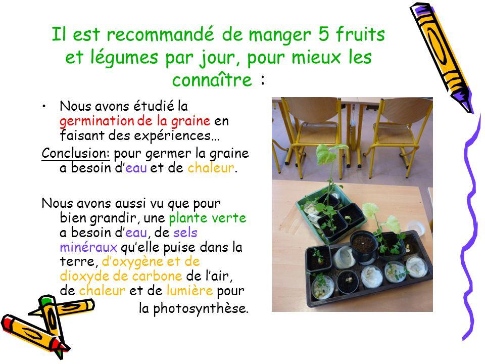 Il est recommandé de manger 5 fruits et légumes par jour, pour mieux les connaître :