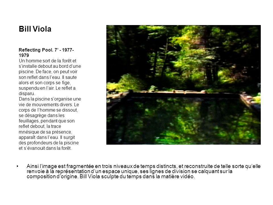 Bill Viola Reflecting Pool. 7' - 1977-1979.