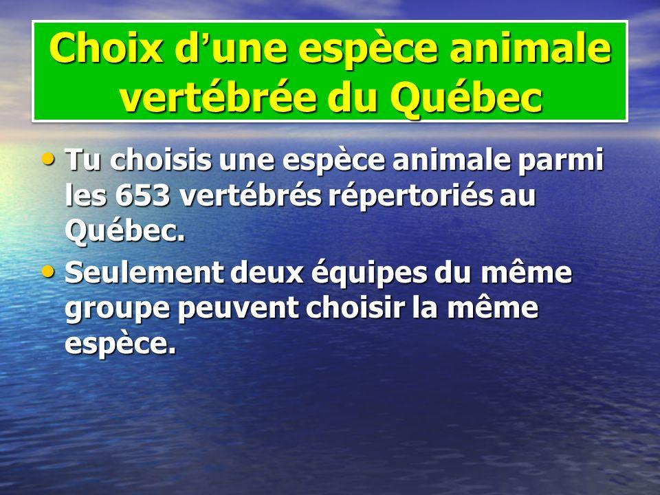 Choix d'une espèce animale vertébrée du Québec
