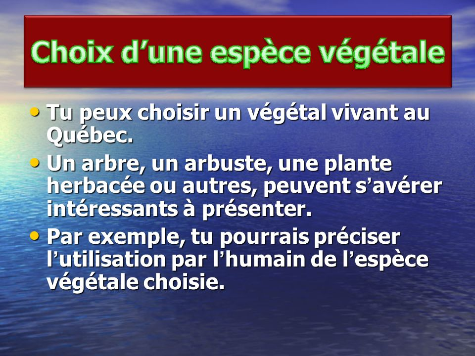 Choix d'une espèce végétale