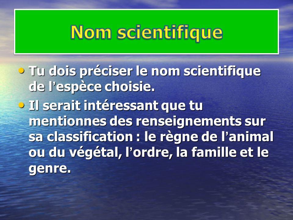 Nom scientifique Tu dois préciser le nom scientifique de l'espèce choisie.