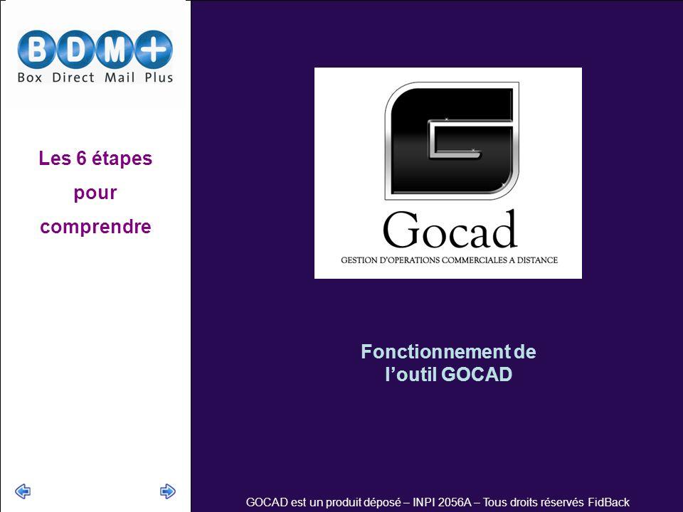 Les 6 étapes pour comprendre Fonctionnement de l'outil GOCAD