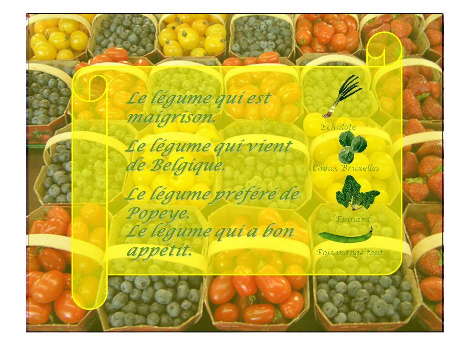 Épi Le légume qui est maigrison. Le légume qui vient de Belgique.