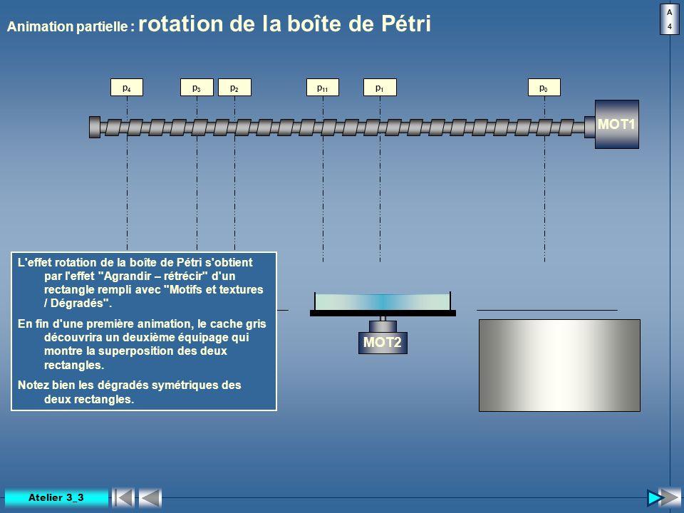 Animation partielle : rotation de la boîte de Pétri