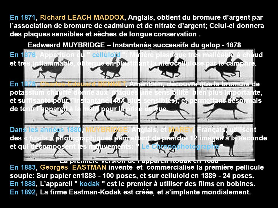 Eadweard MUYBRIDGE – Instantanés successifs du galop - 1878