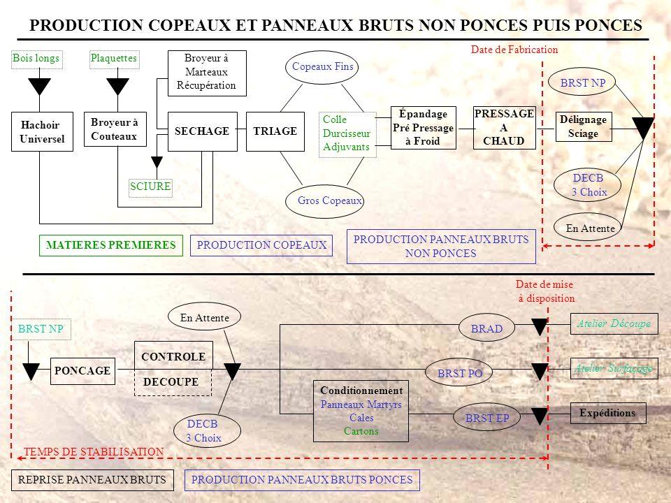 PRODUCTION COPEAUX ET PANNEAUX BRUTS NON PONCES PUIS PONCES