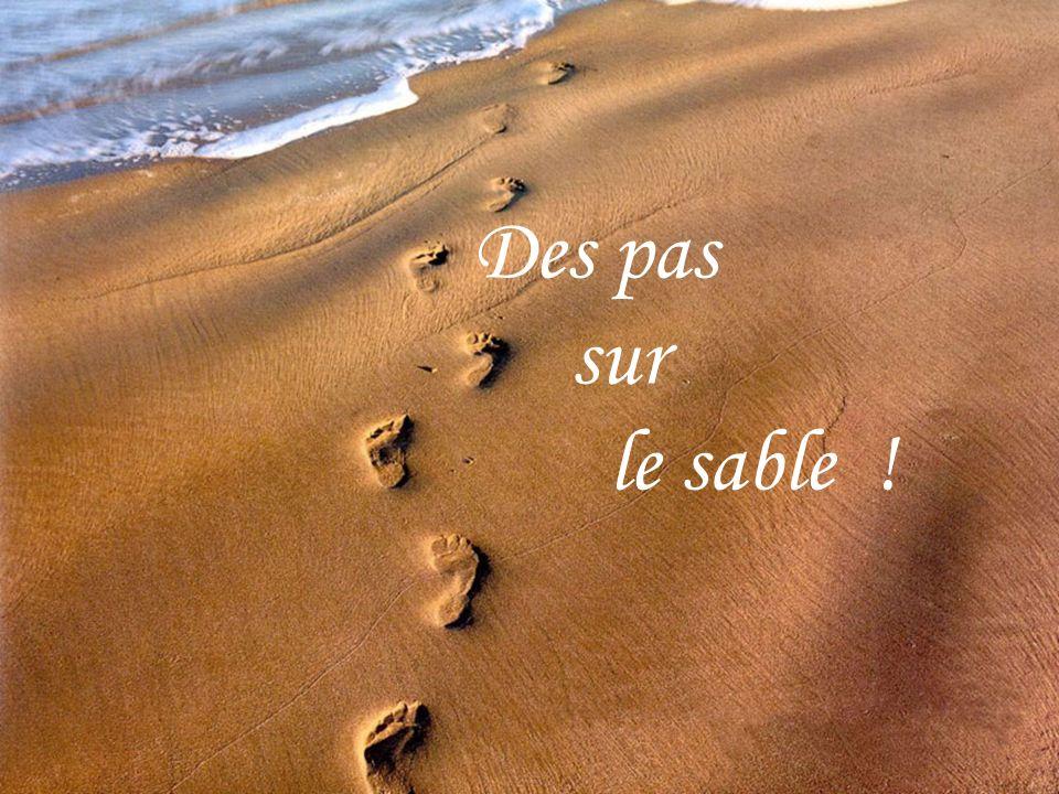 Des pas sur le sable !