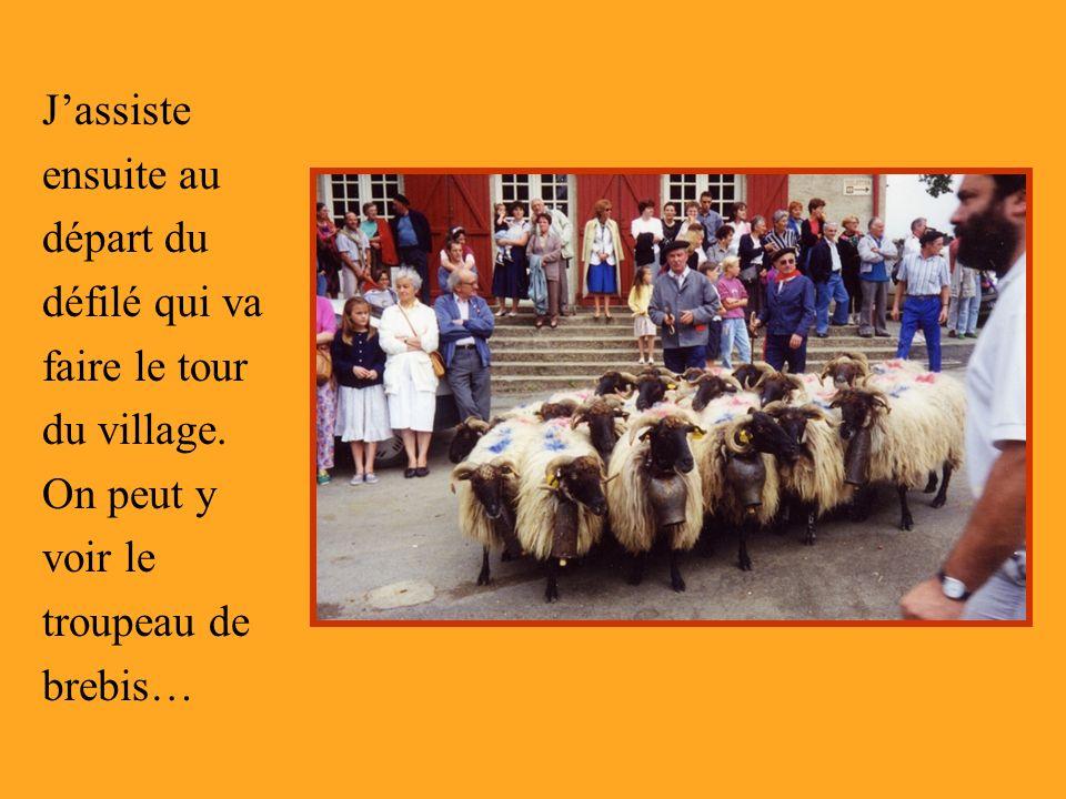 J'assiste ensuite au départ du défilé qui va faire le tour du village.