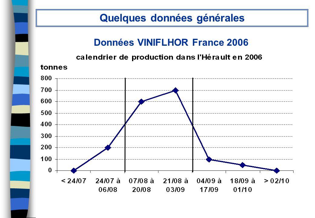 Quelques données générales Données VINIFLHOR France 2006