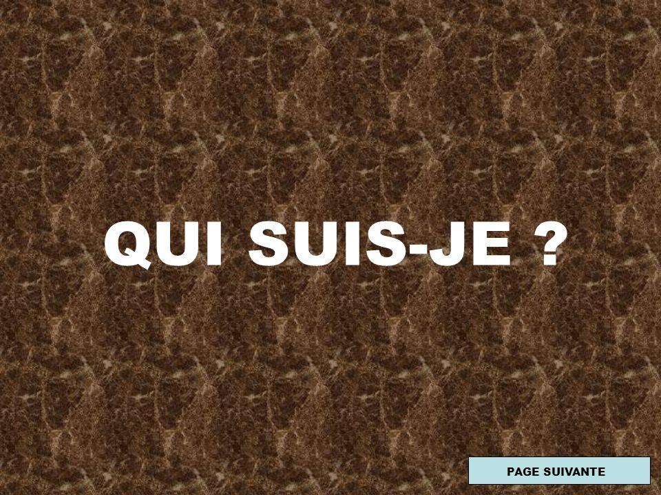 QUI SUIS-JE PAGE SUIVANTE