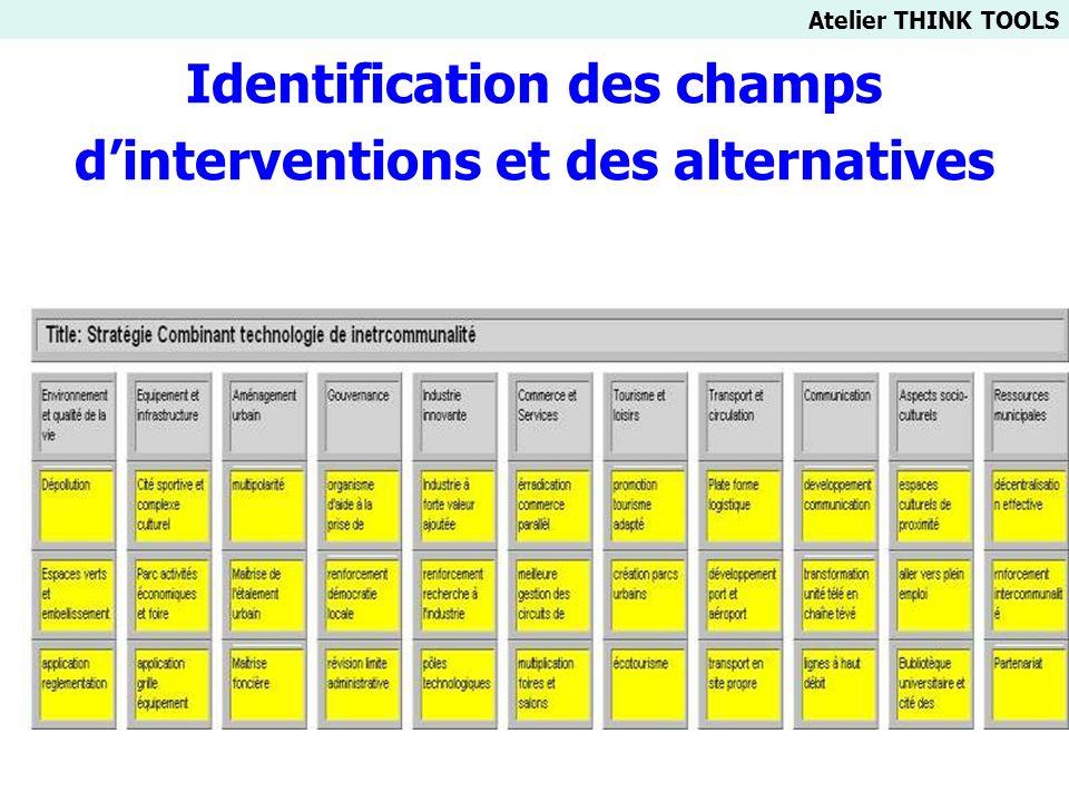 Identification des champs d'interventions et des alternatives