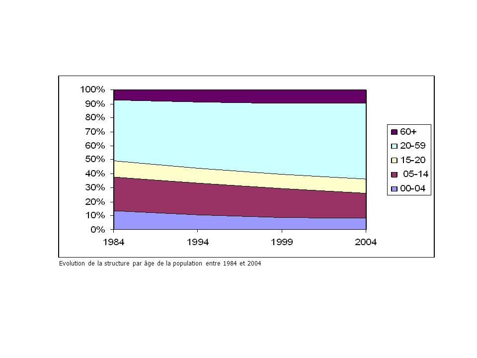 Evolution de la structure par âge de la population entre 1984 et 2004
