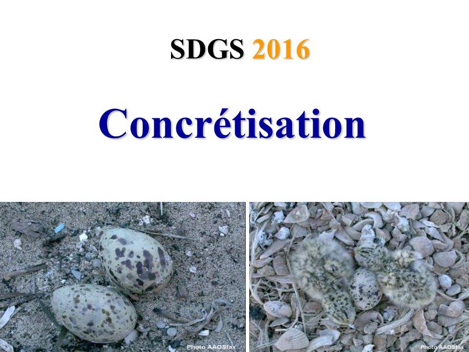 SDGS 2016 Concrétisation