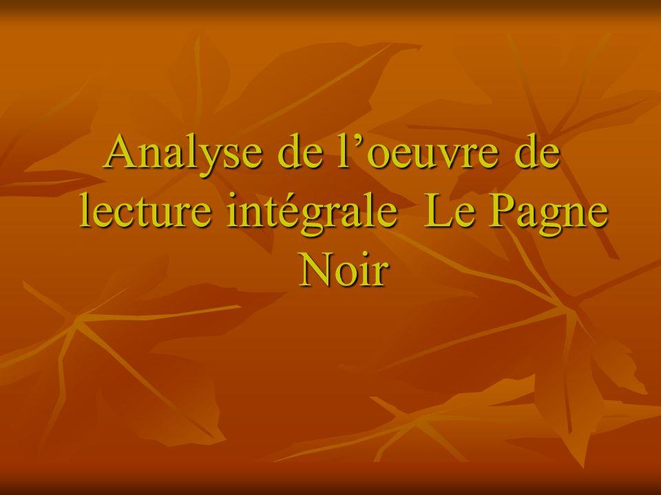 Analyse de l'oeuvre de lecture intégrale Le Pagne Noir