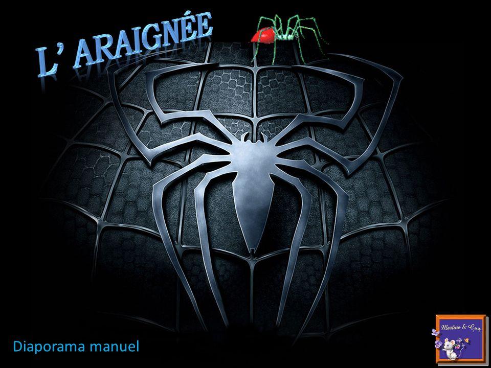 L' araignée Diaporama manuel