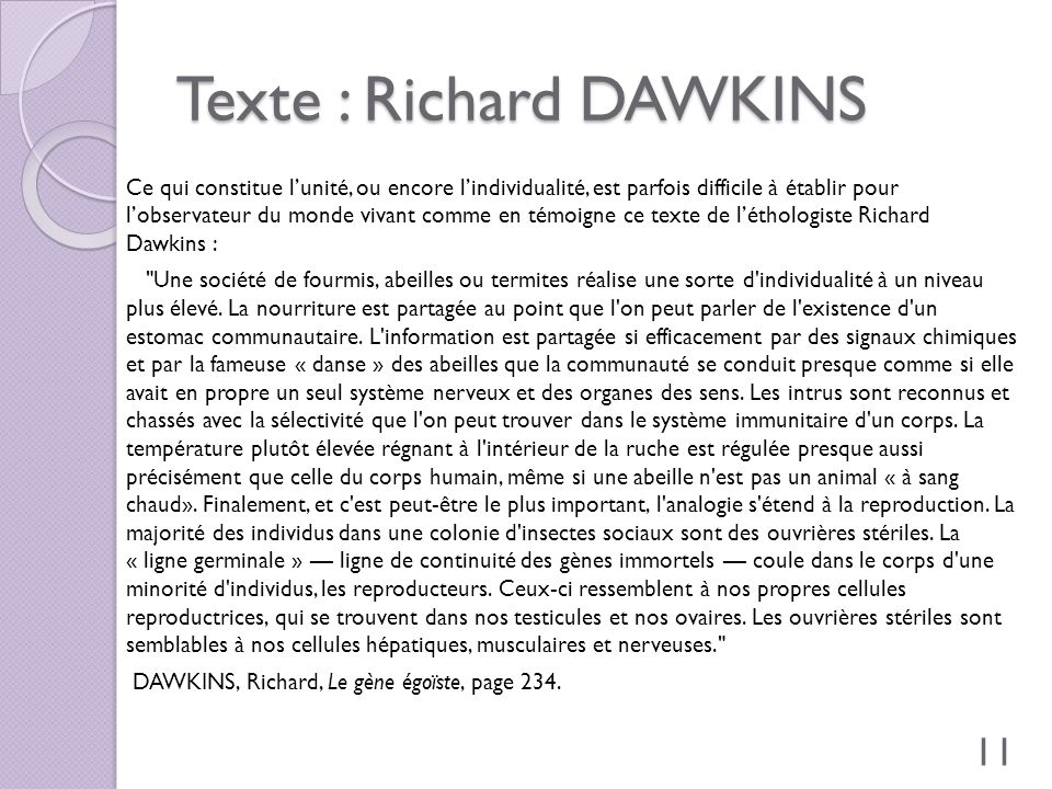 Texte : Richard DAWKINS