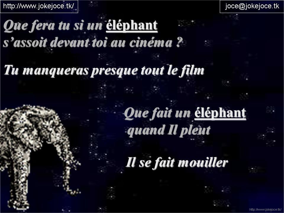 Que fera tu si un éléphant