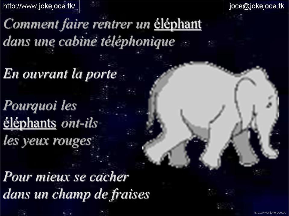 Comment faire rentrer un éléphant