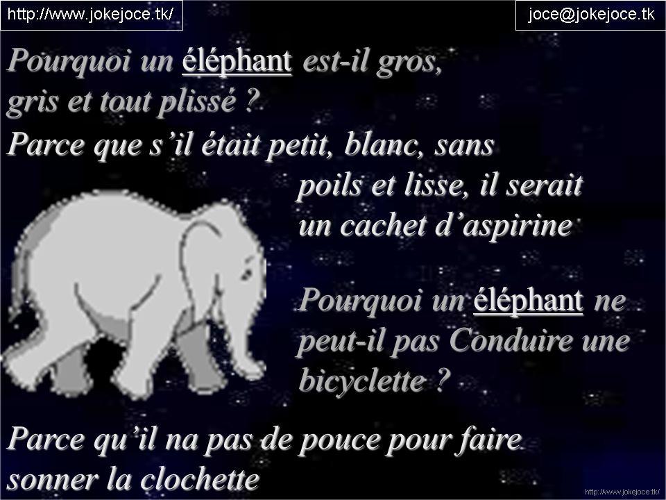 Pourquoi un éléphant est-il gros,
