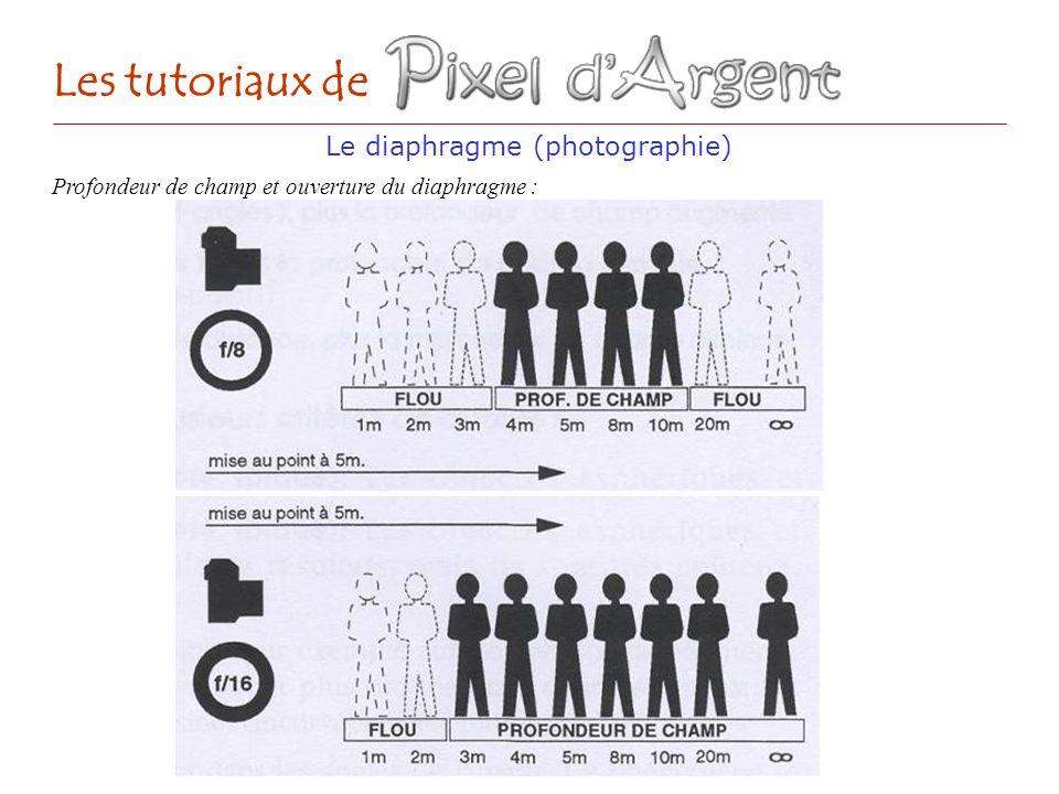 Le diaphragme (photographie)