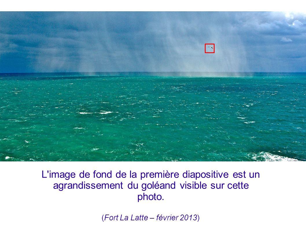 (Fort La Latte – février 2013)