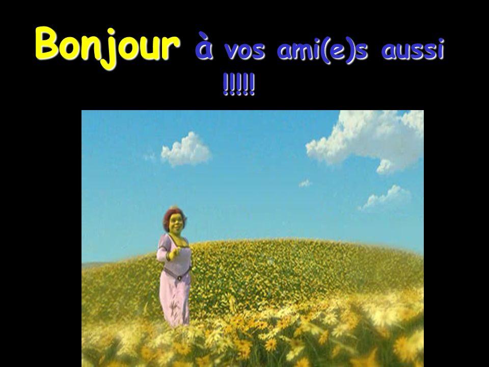 Bonjour à vos ami(e)s aussi !!!!!