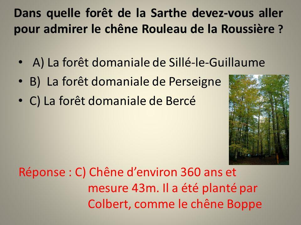 Dans quelle forêt de la Sarthe devez-vous aller pour admirer le chêne Rouleau de la Roussière