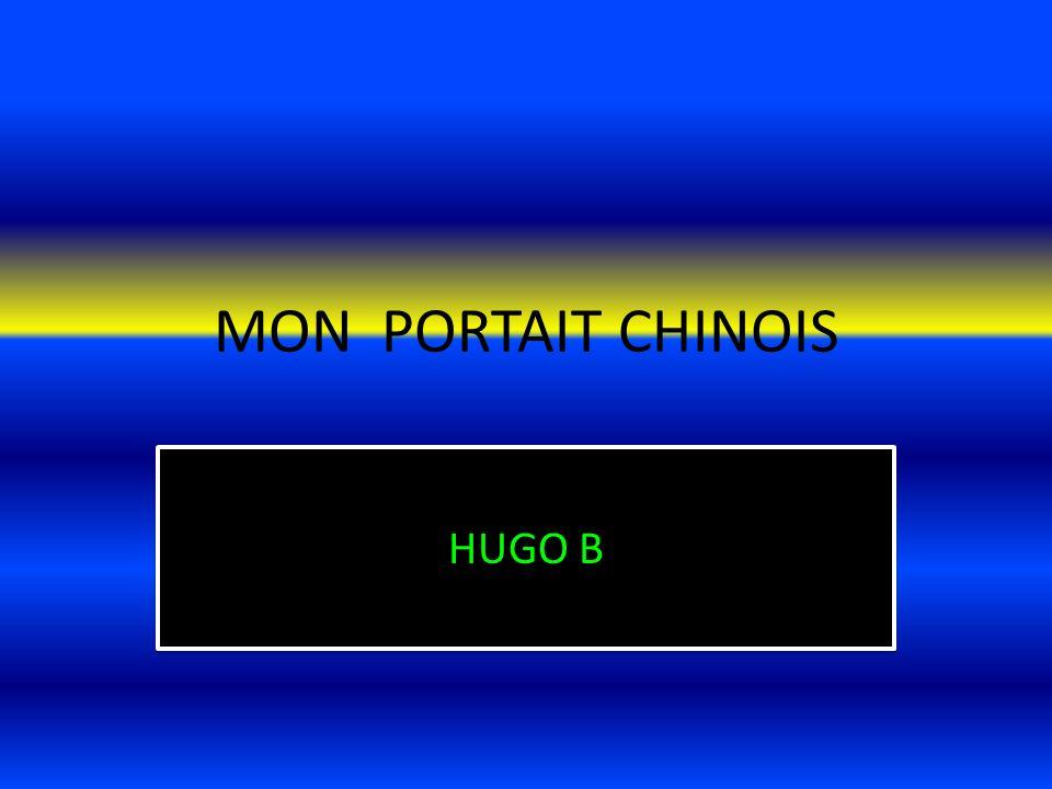 MON PORTAIT CHINOIS HUGO B