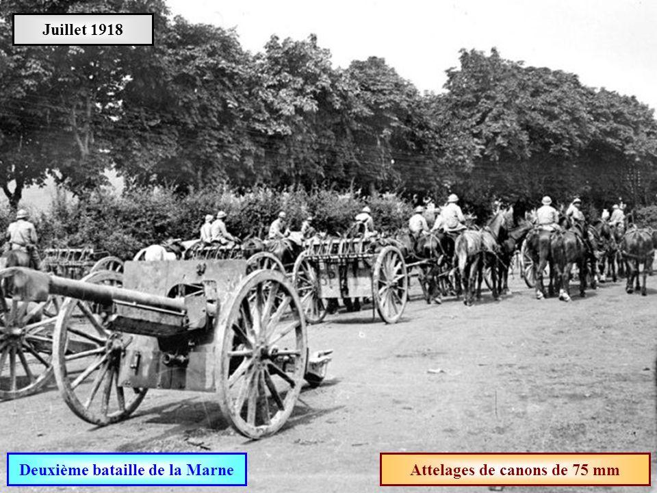 Deuxième bataille de la Marne Attelages de canons de 75 mm