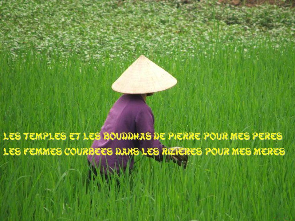Les temples et les Bouddhas de pierre pour mes pères Les femmes courbées dans les rizières pour mes mères
