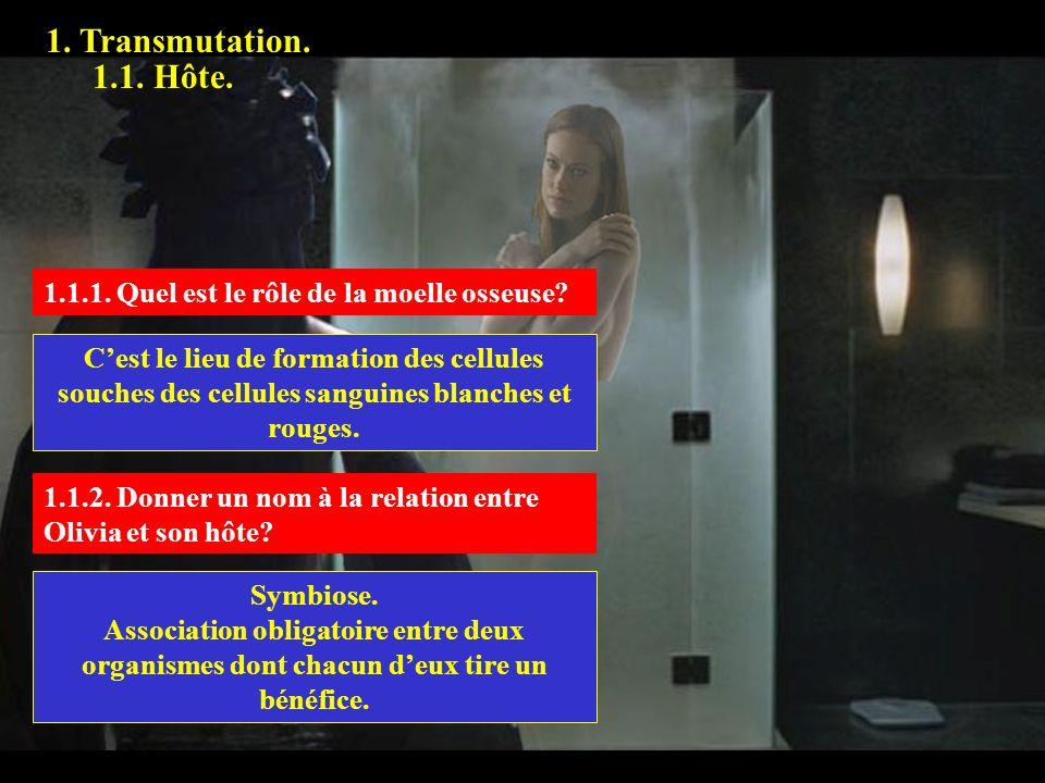 1. Transmutation. 1.1. Hôte. 1.1.1. 1.1.1. Quel est le rôle de la moelle osseuse