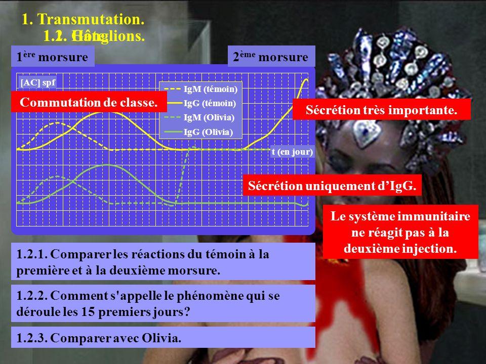 1.2.1 1. Transmutation. 1.2. Ganglions. 1.1. Hôte. 1ère morsure