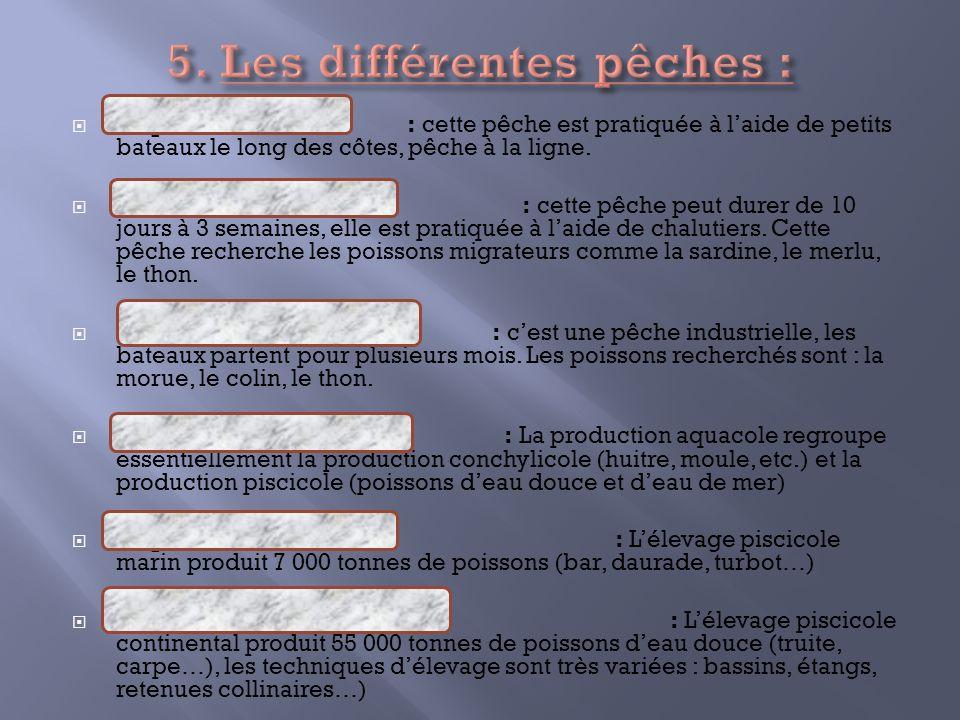 5. Les différentes pêches :