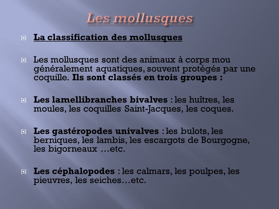 Les mollusques La classification des mollusques