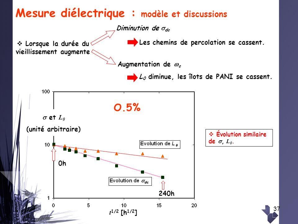 Mesure diélectrique : modèle et discussions