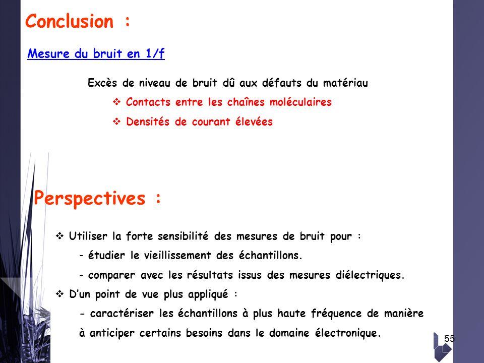 Conclusion : Perspectives : Mesure du bruit en 1/f