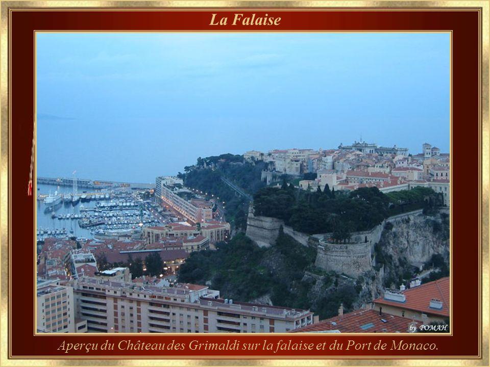 Aperçu du Château des Grimaldi sur la falaise et du Port de Monaco.
