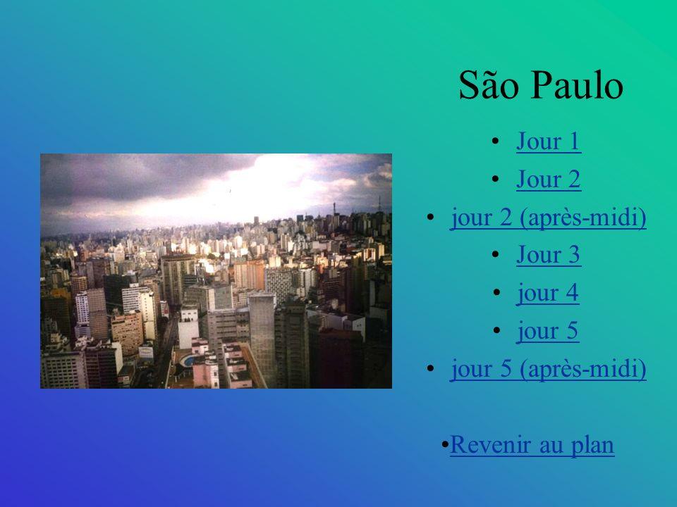 São Paulo Jour 1 Jour 2 jour 2 (après-midi) Jour 3 jour 4 jour 5