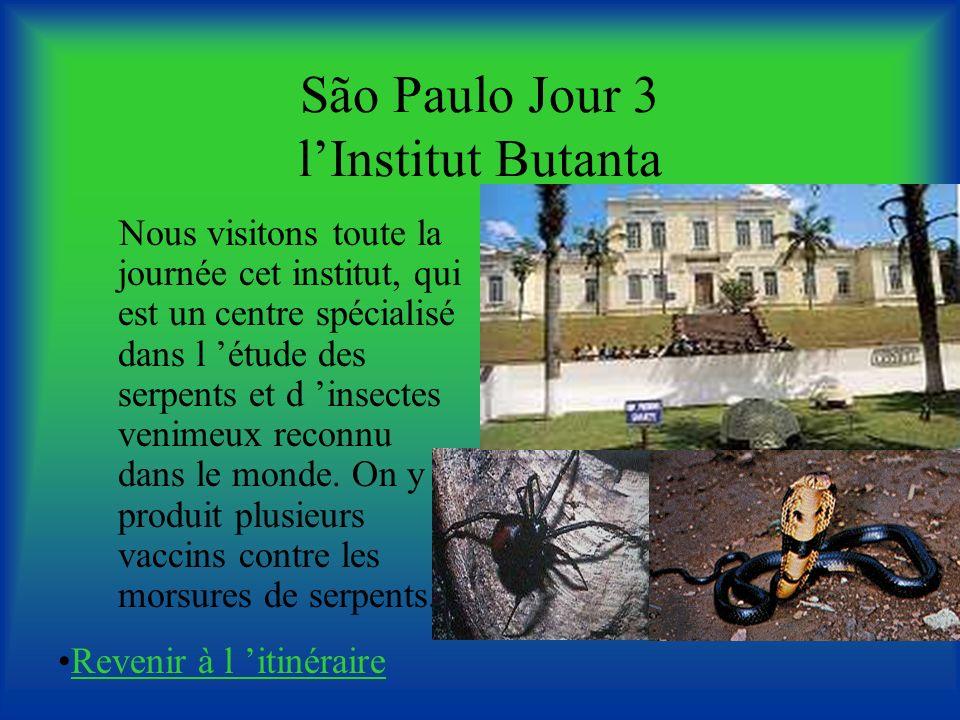 São Paulo Jour 3 l'Institut Butanta